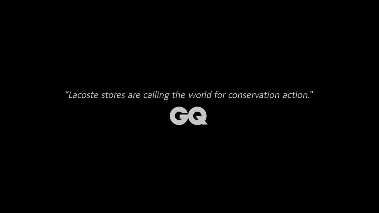 Thumbnail for Crocodile Free