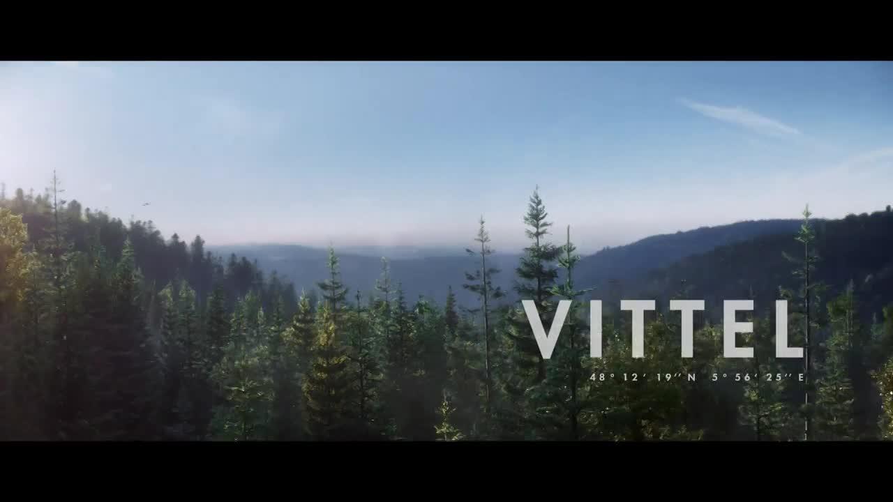 Thumbnail for Biodiversité