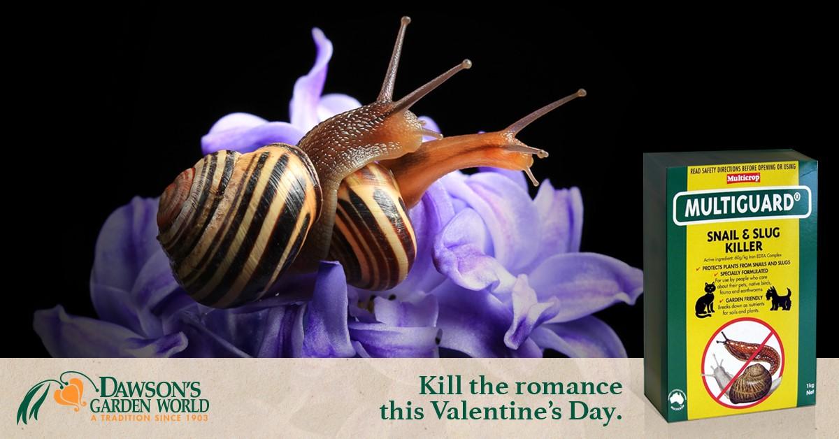 Kill the Romance Thumbnail