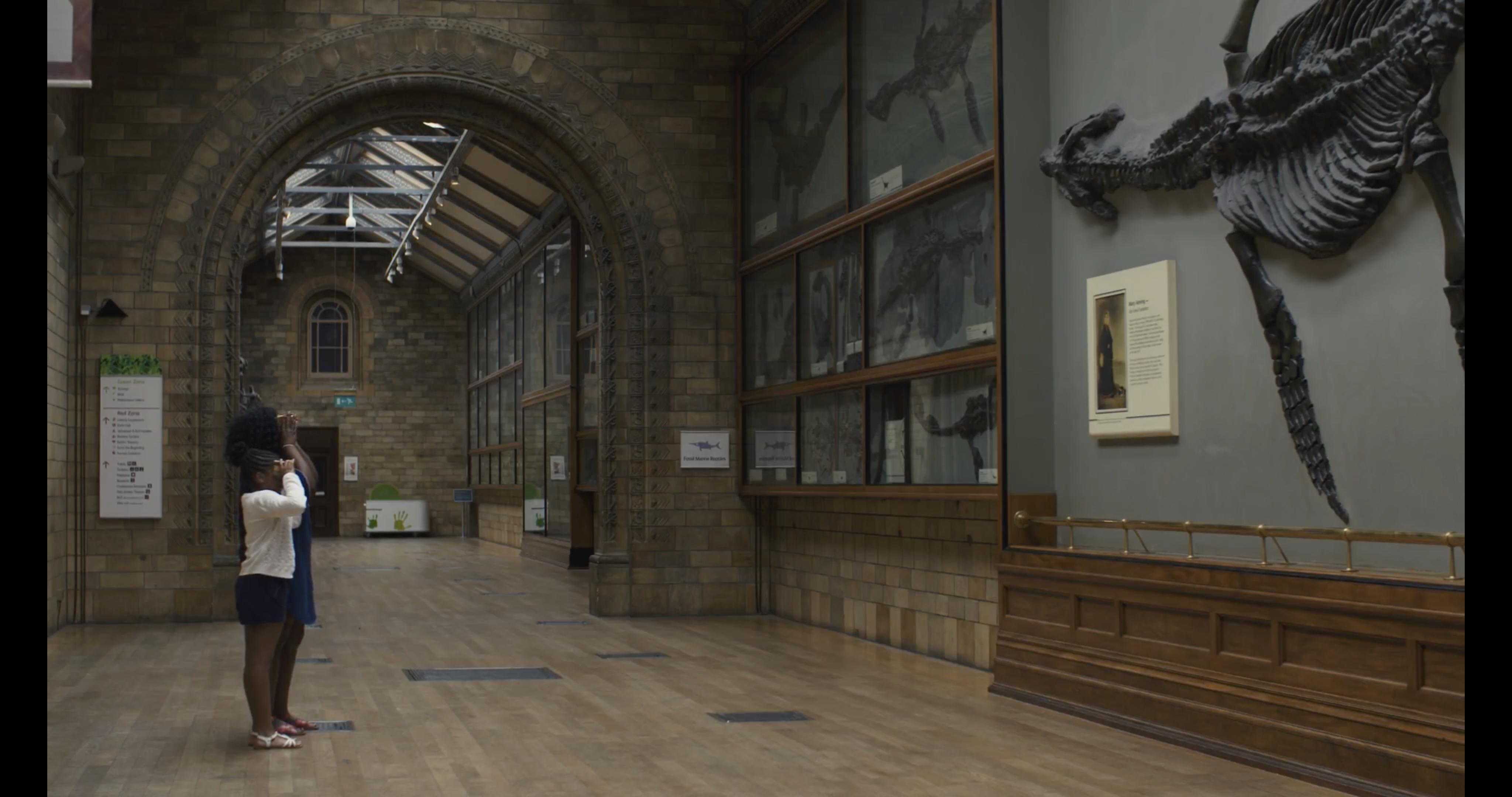 Thumbnail for Back To Life In Virtual Reality: Rhomaleosaurus & Giraffatitan
