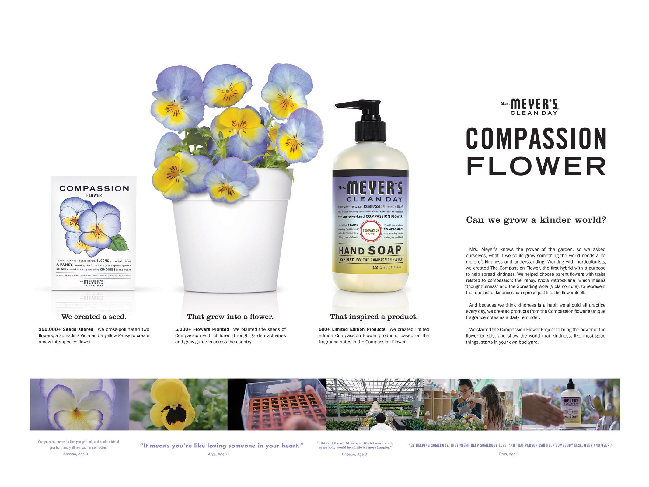 Compassion Flower Thumbnail