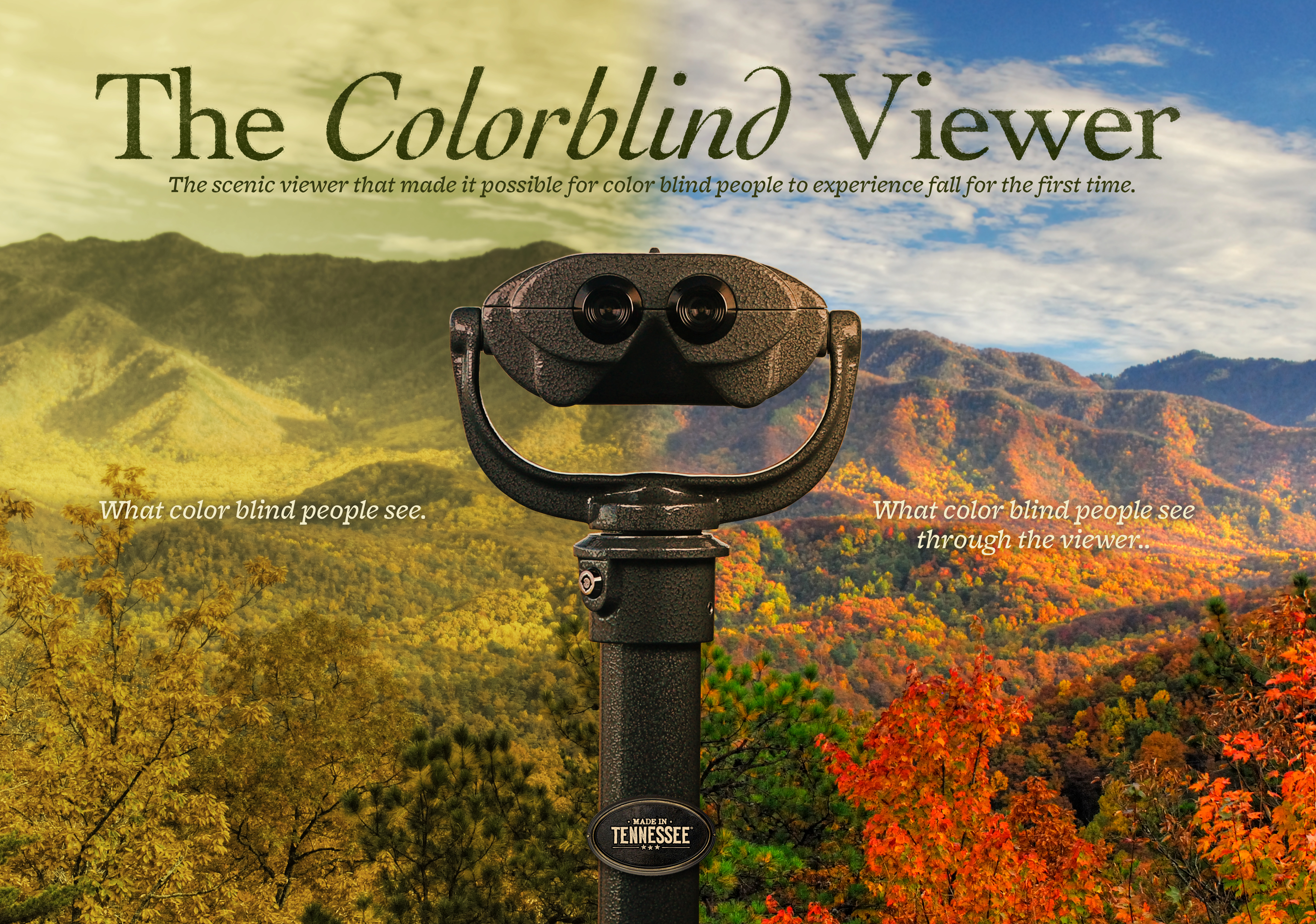 Thumbnail for The Colorblind Viewer