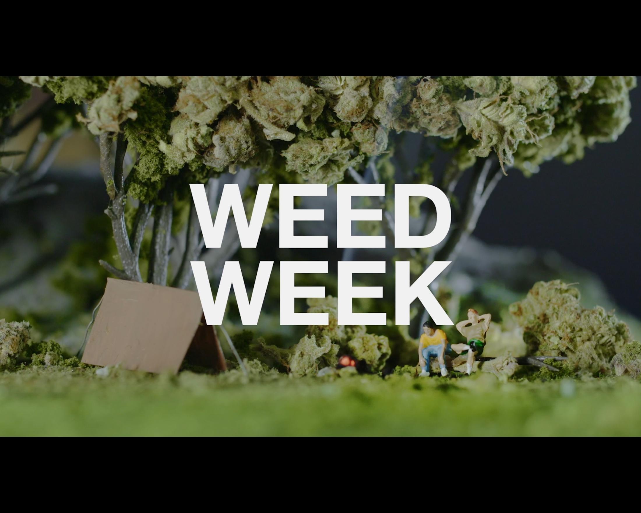 Thumbnail for Weedland