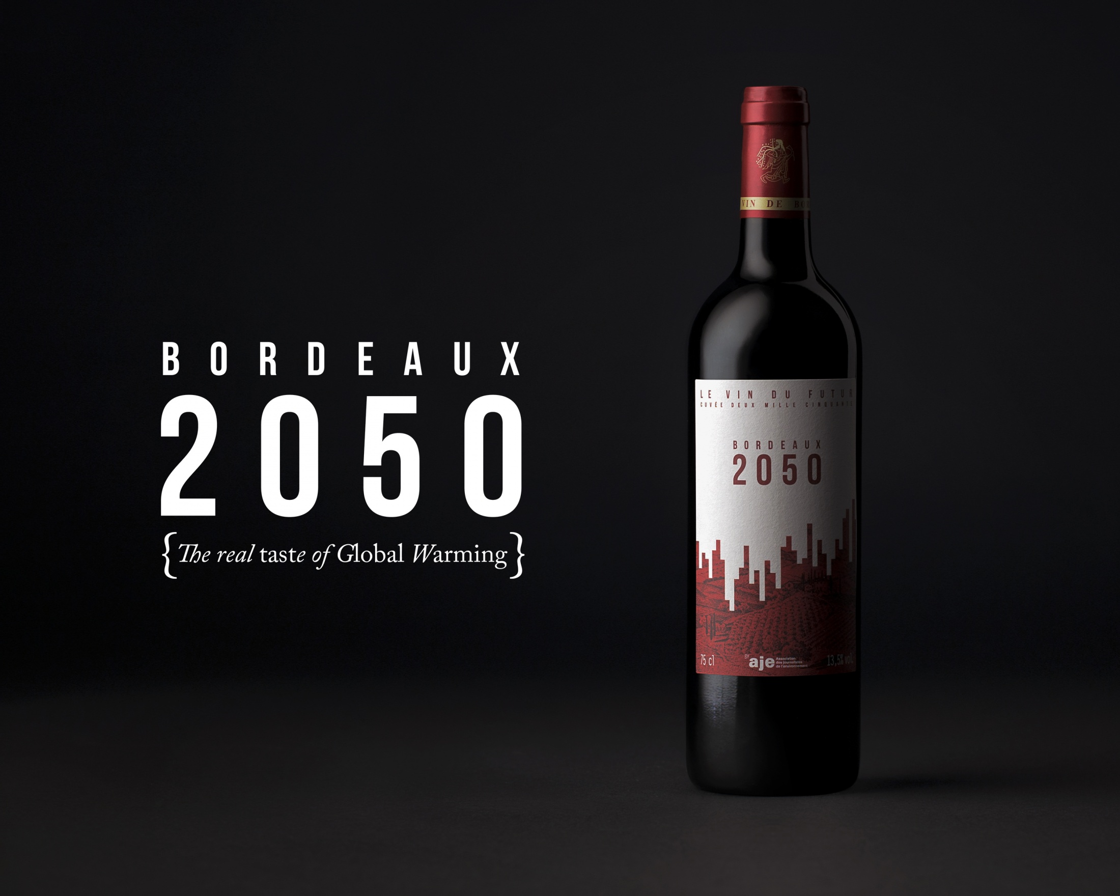 Thumbnail for Bordeaux 2050