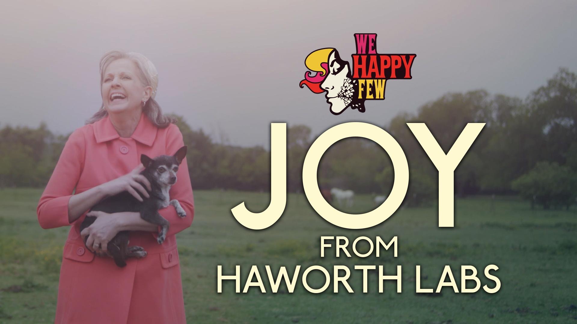 Thumbnail for Haworth Labs: Introducing Joy