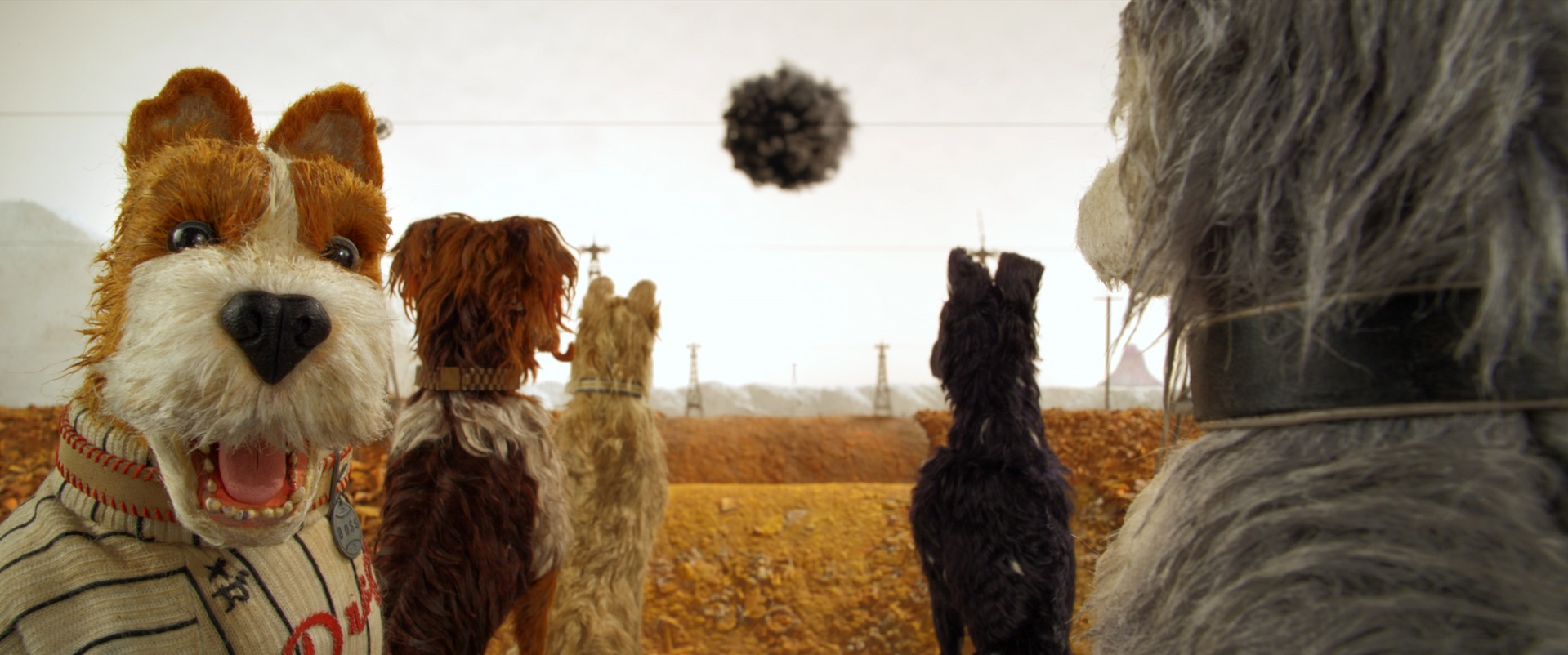 Thumbnail for Isle of Dogs: Ode to Dogs on Set