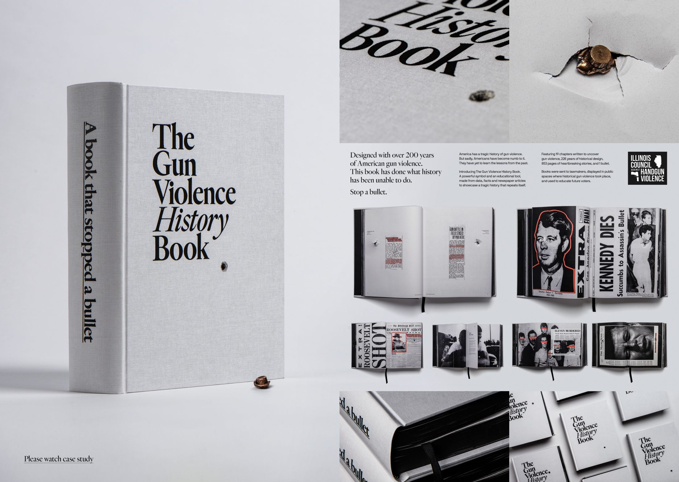 Thumbnail for The Gun Violence History Book