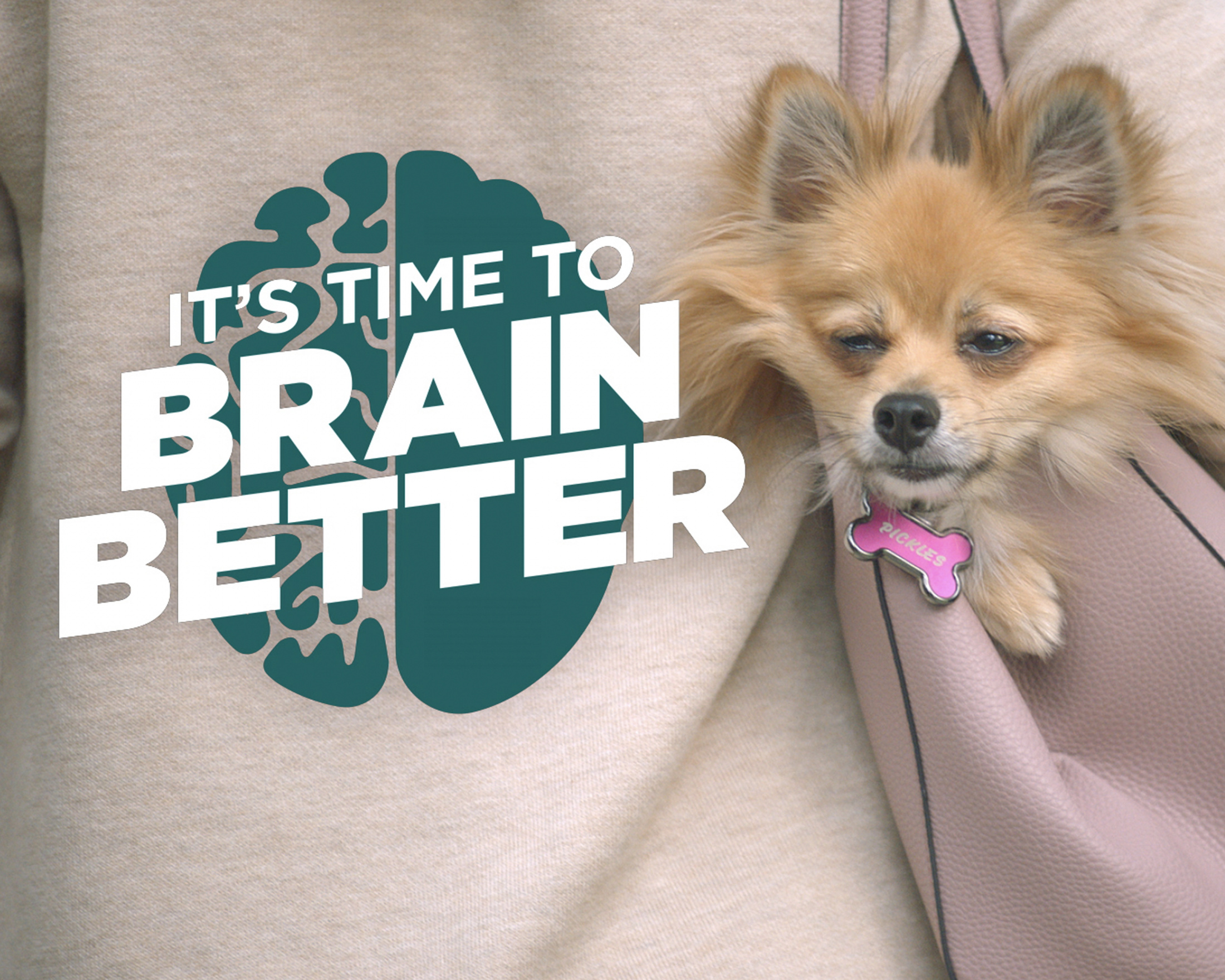 Neuriva - It's Time To Brain Better (Pickles) Thumbnail