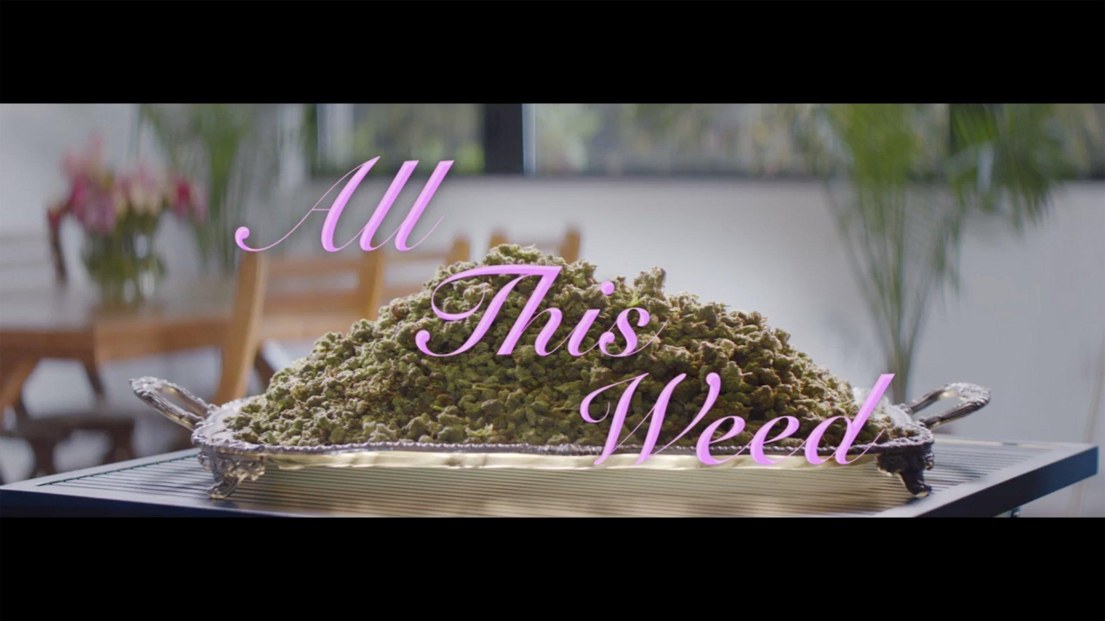 VICELAND: Weed Week Interstitials