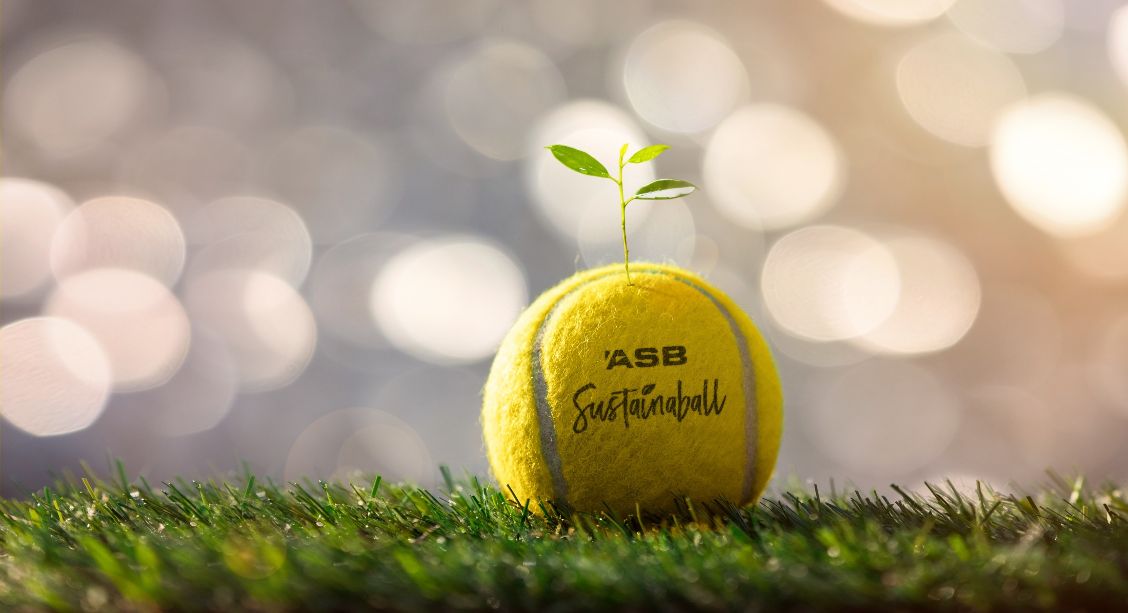 Thumbnail for Sustainaball - A biodegradable tennis ball that plants a tree.