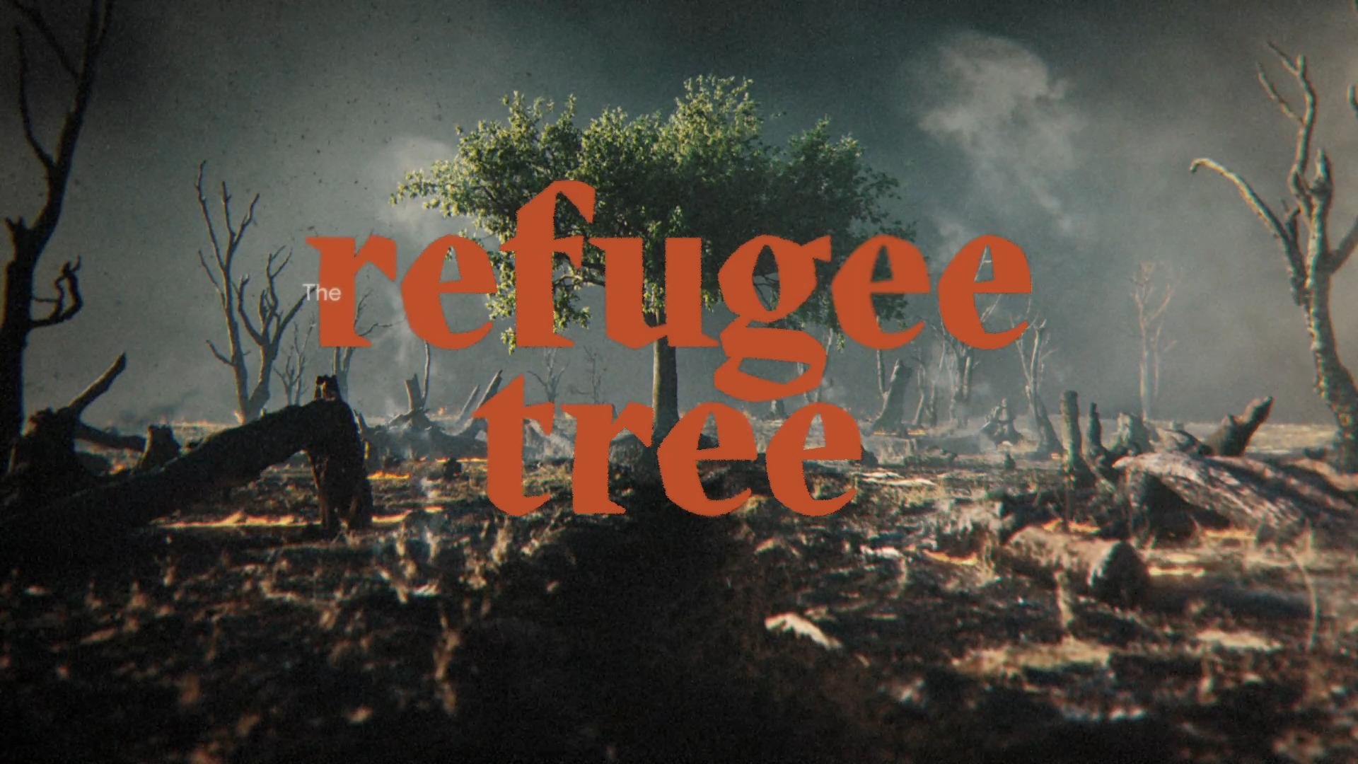 Thumbnail for The Refugee Tree