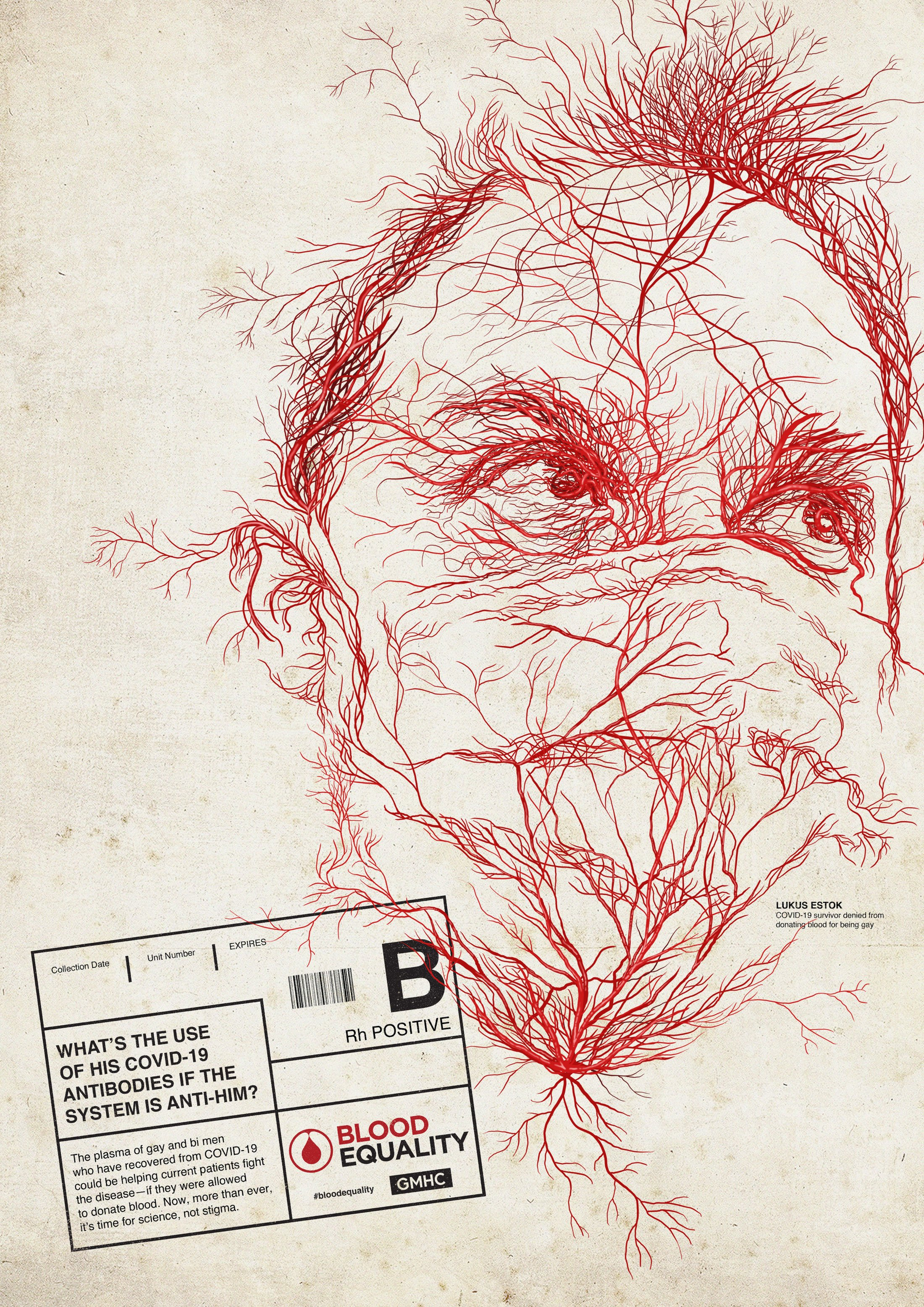 Thumbnail for Blood Vessels