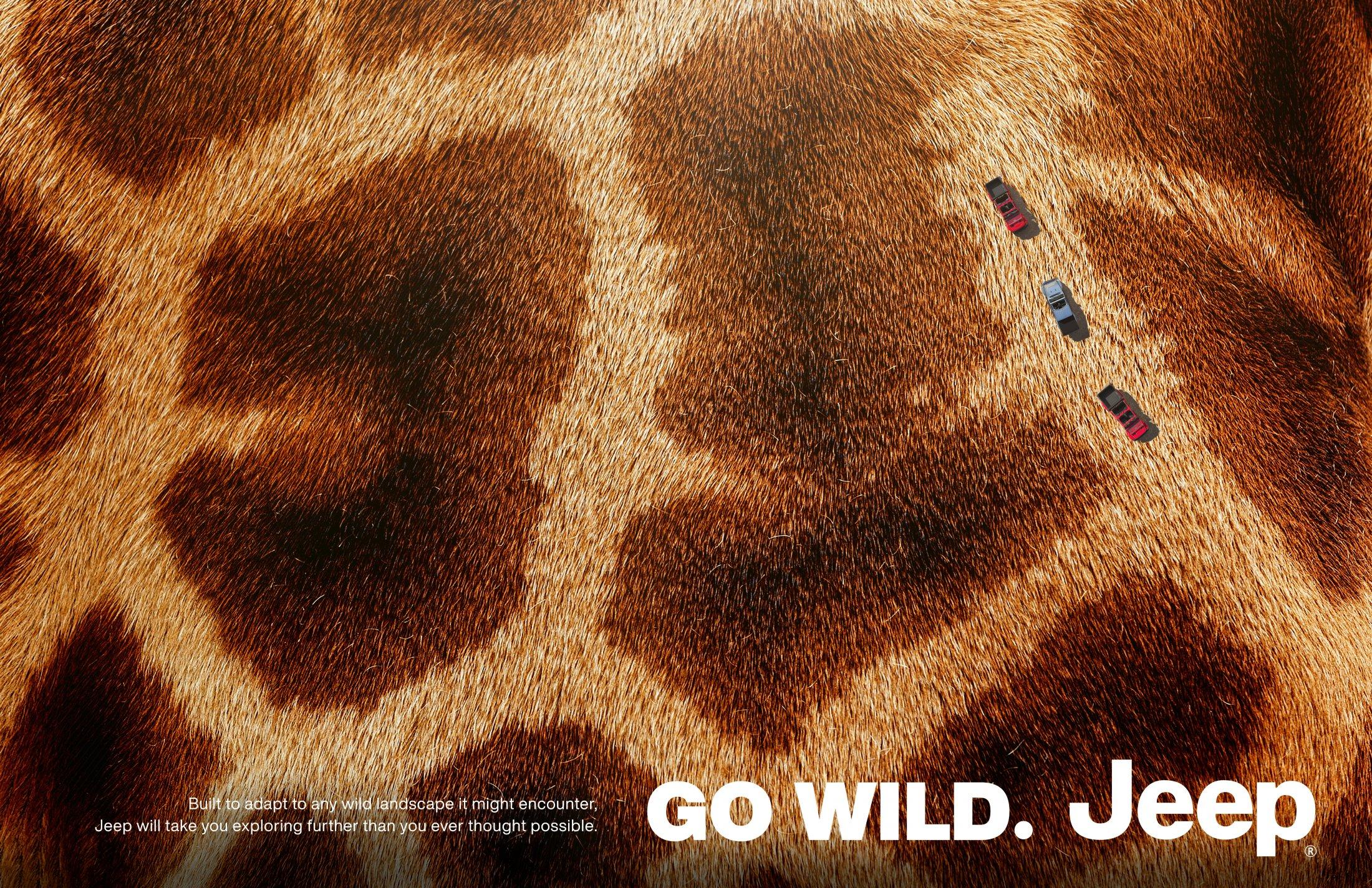 Thumbnail for Go Wild 1: Giraffe