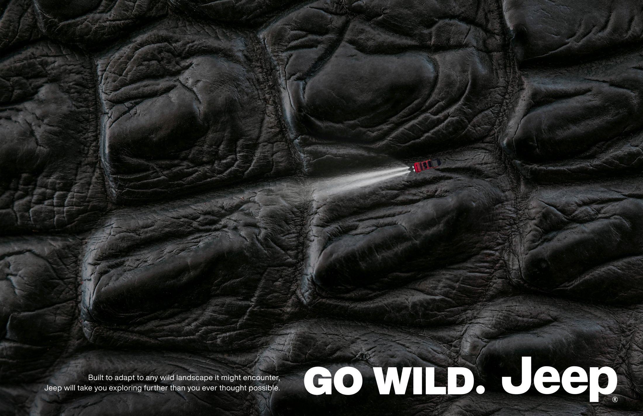Thumbnail for Go Wild 3: Crocodile