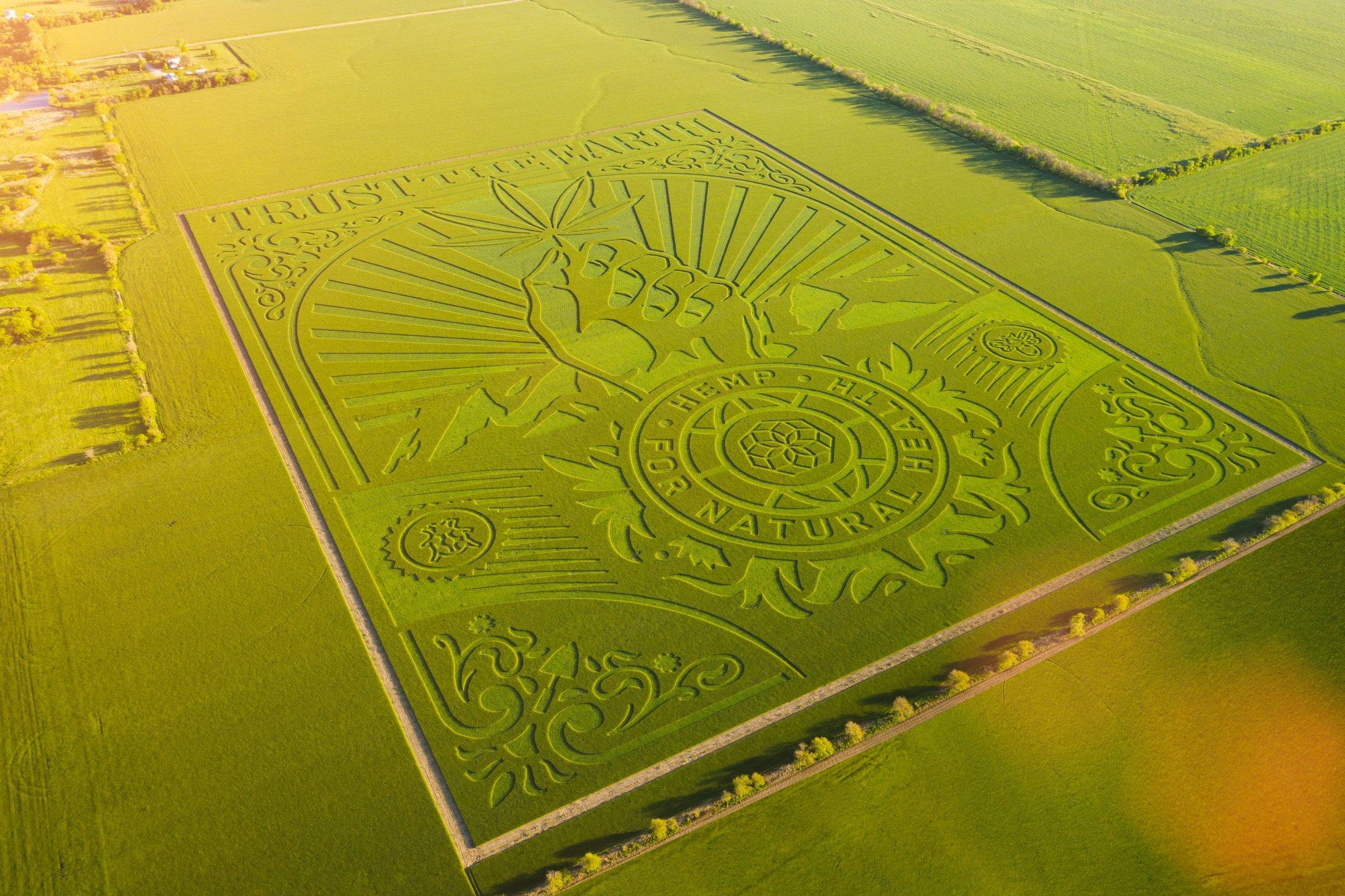 Charlotte's Web: Trust The Earth Farm Art