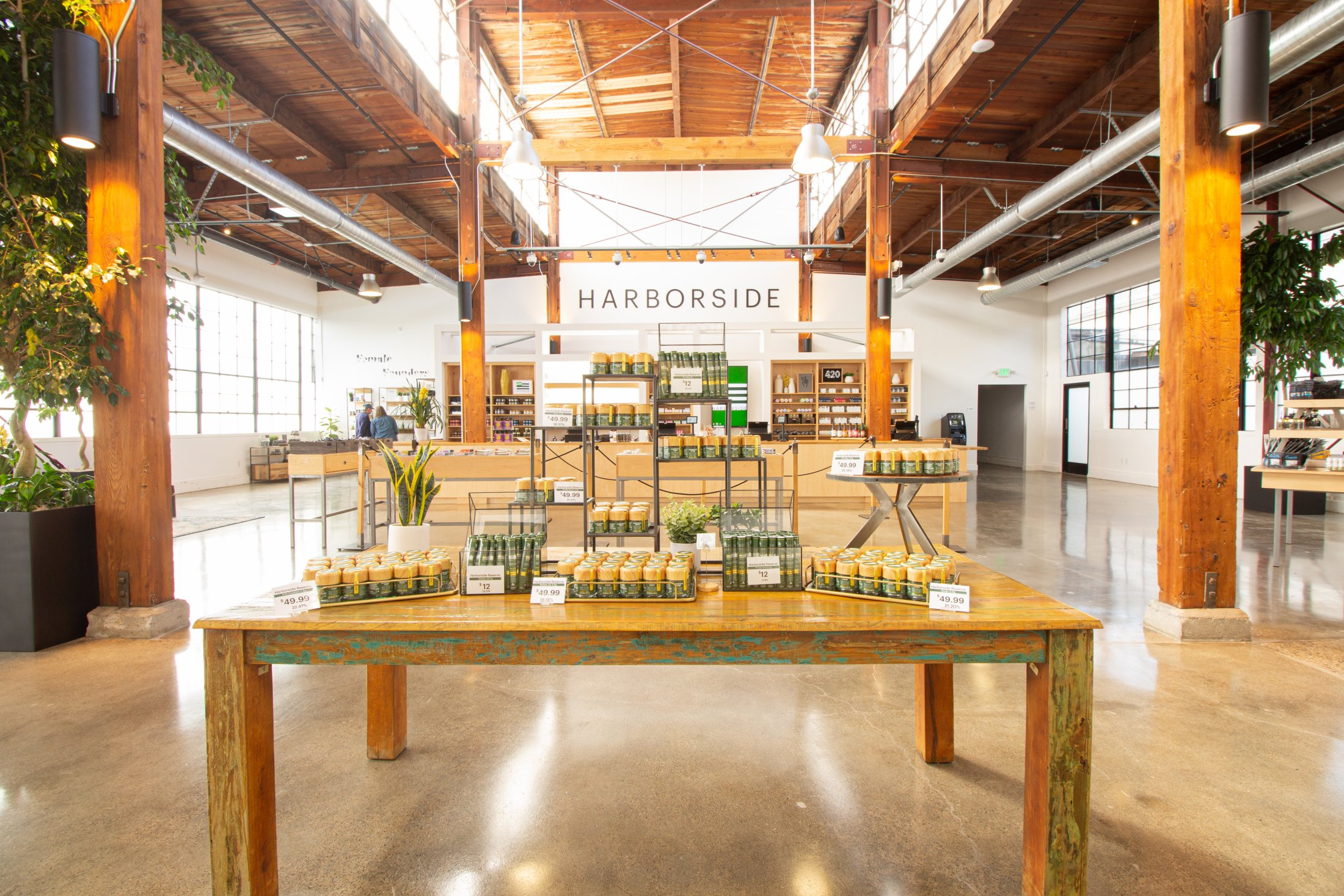 Harborside: Reimagining the cannabis retail experience through a minimalist, greenhouse-inspired dispensary design