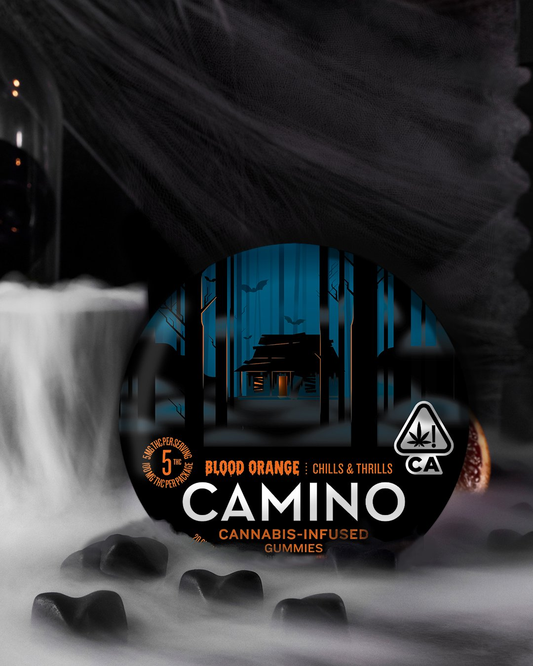 Camino : A Sustainable State of Mind