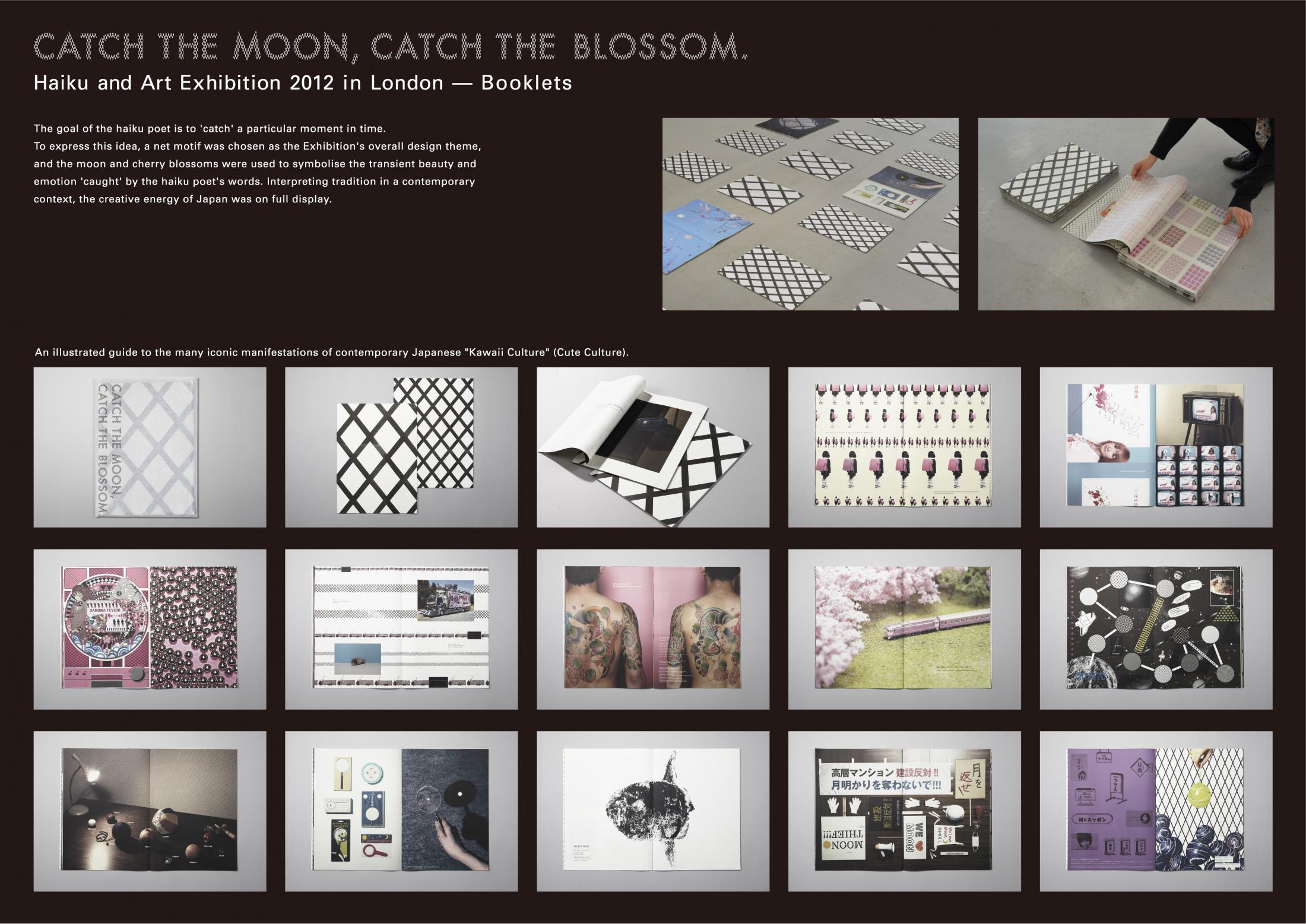 Image Media for CATCH THE MOON,CATCH THE BLOSSOM.