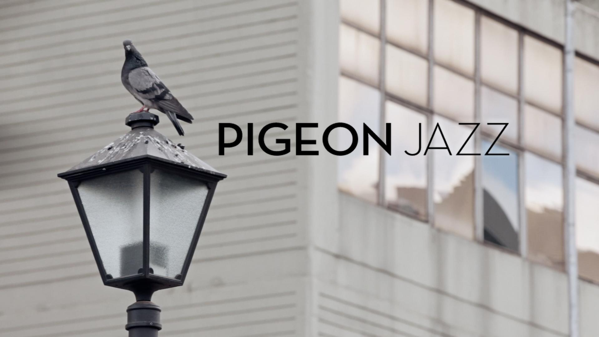 Thumbnail for Pigeon Jazz