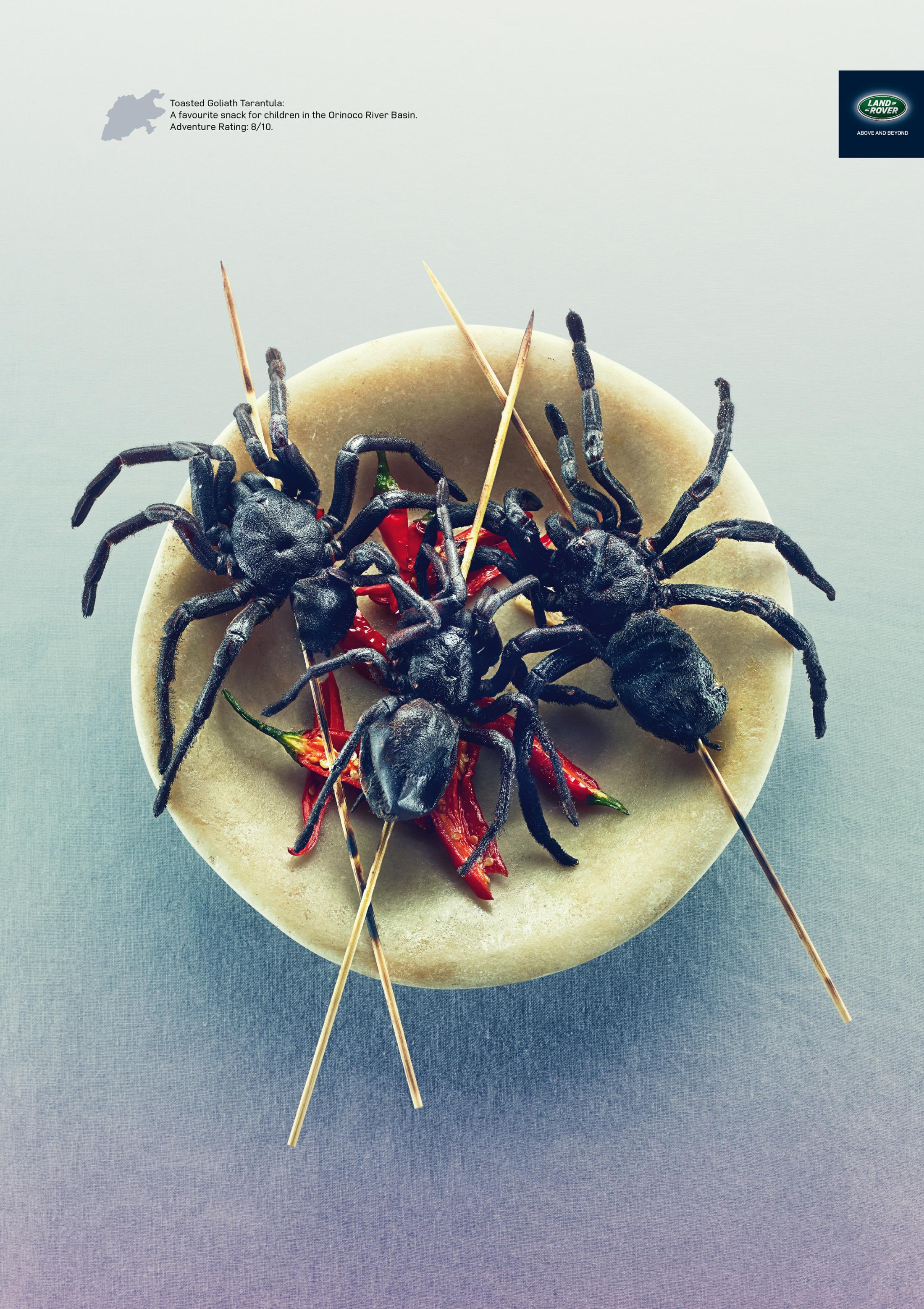 Thumbnail for Goliath Tarantula