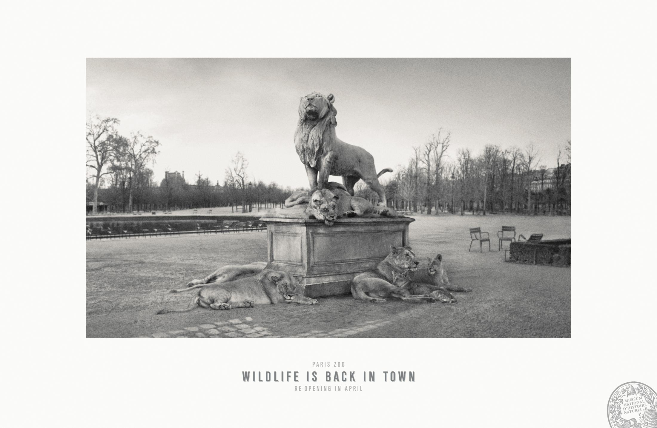 Thumbnail for Jardin des Tuileries