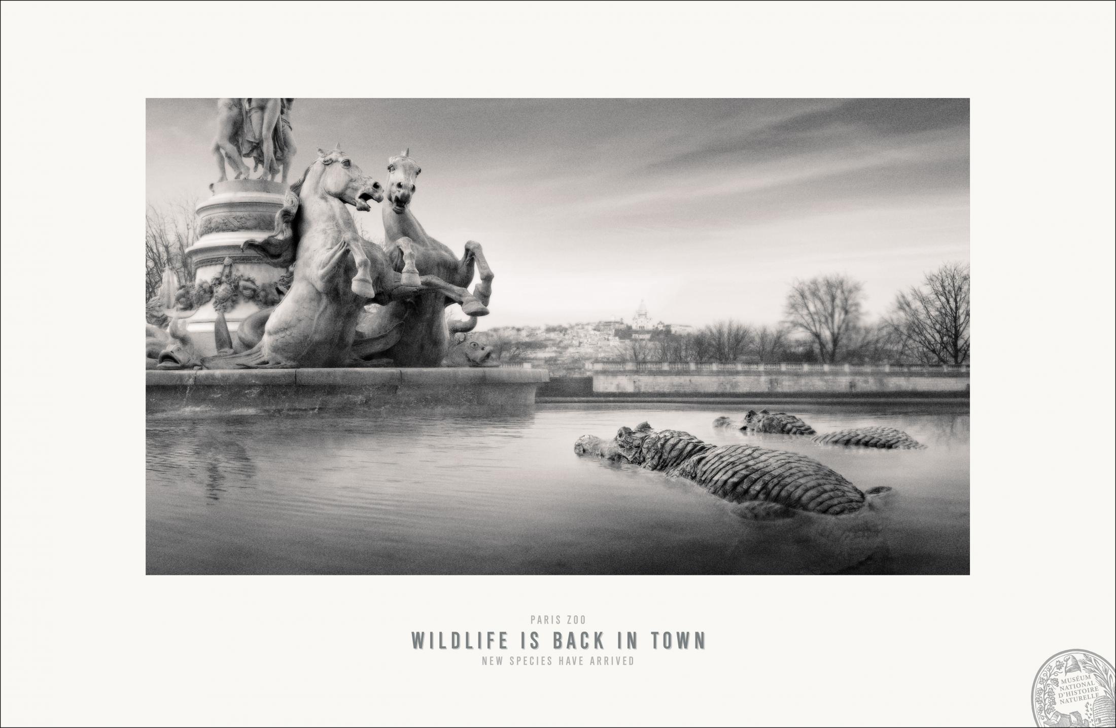 Thumbnail for Paris Zoo - Opera