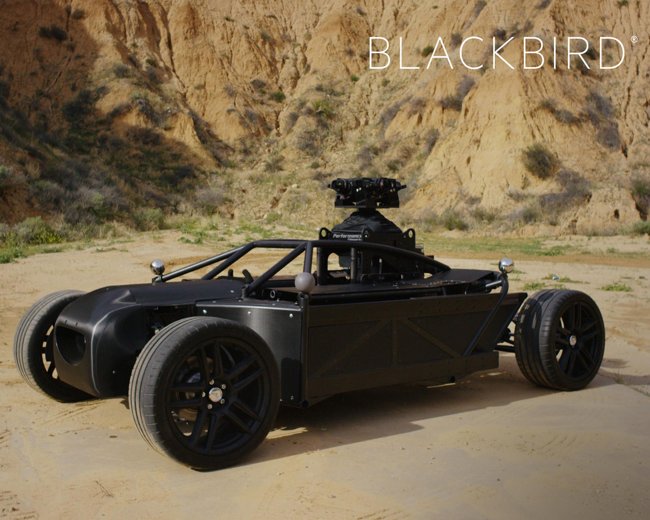 Thumbnail for The Mill Blackbird
