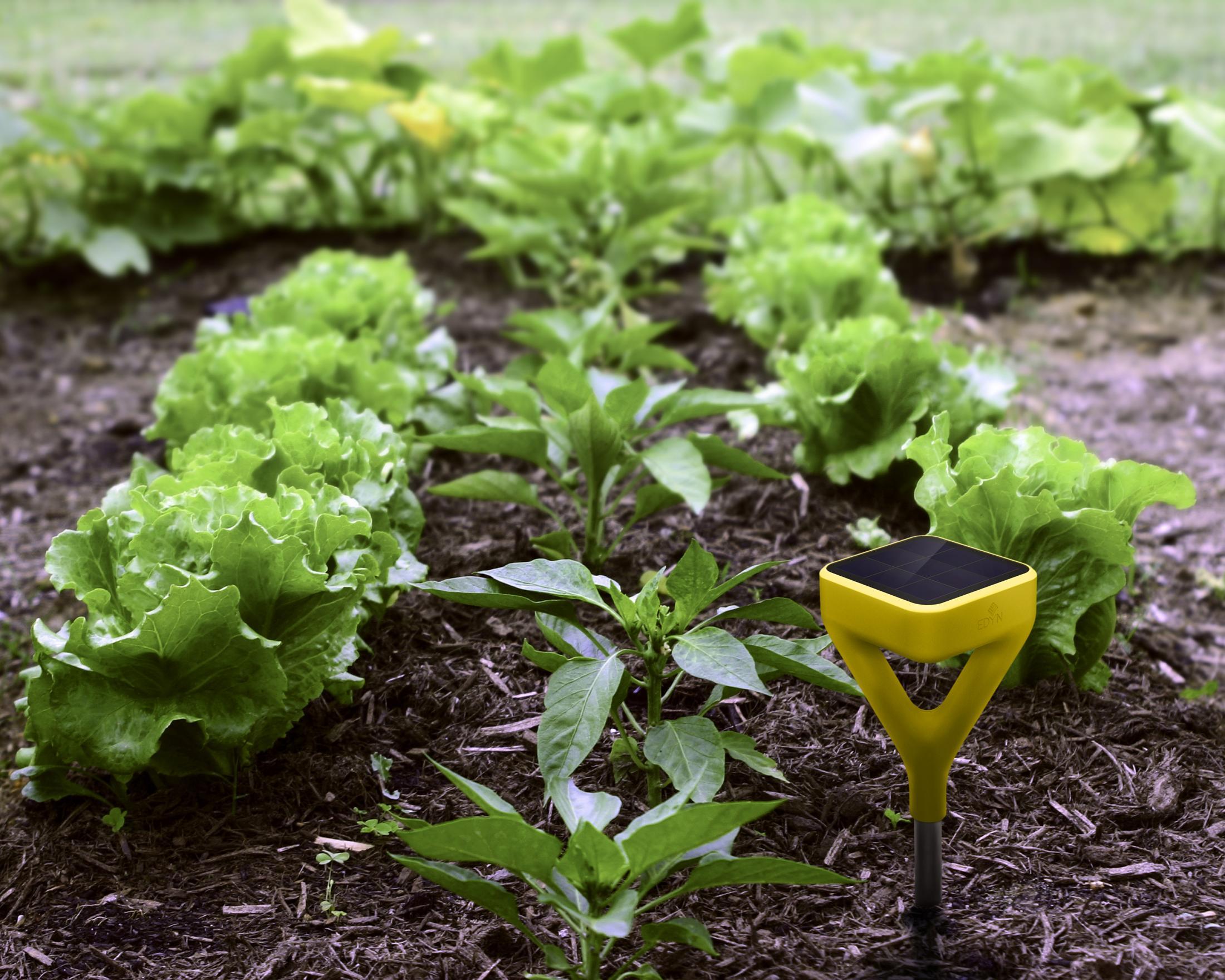 Thumbnail for Edyn Garden Sensor