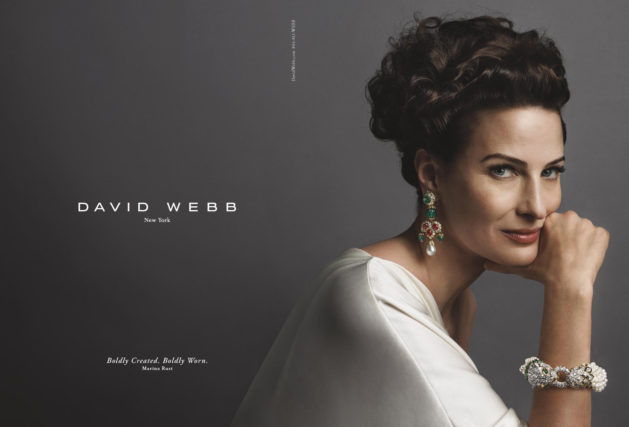 Thumbnail for David Webb