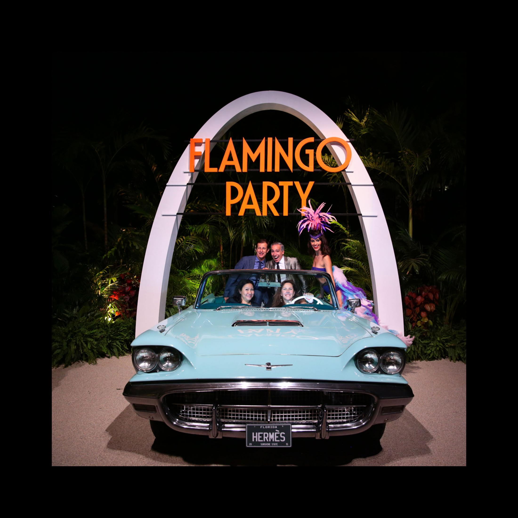 Image Media for Flamingo Party