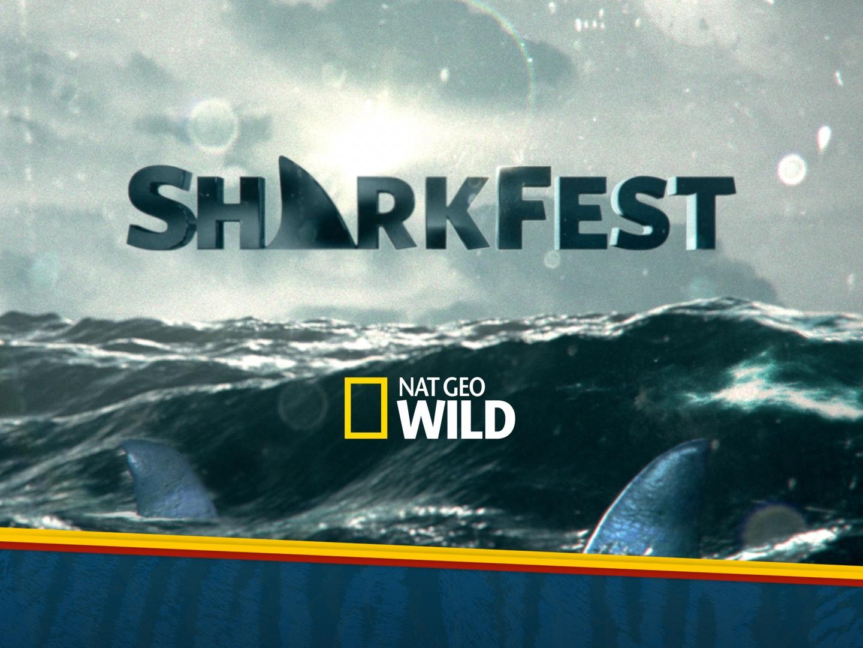 Sharkfest 2017