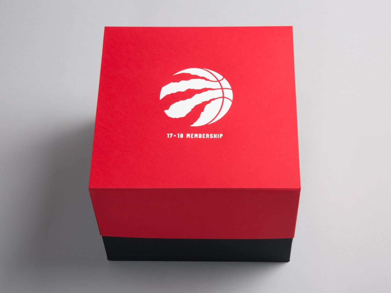 Toronto Raptors Season Ticket Package 2017-18  Thumbnail