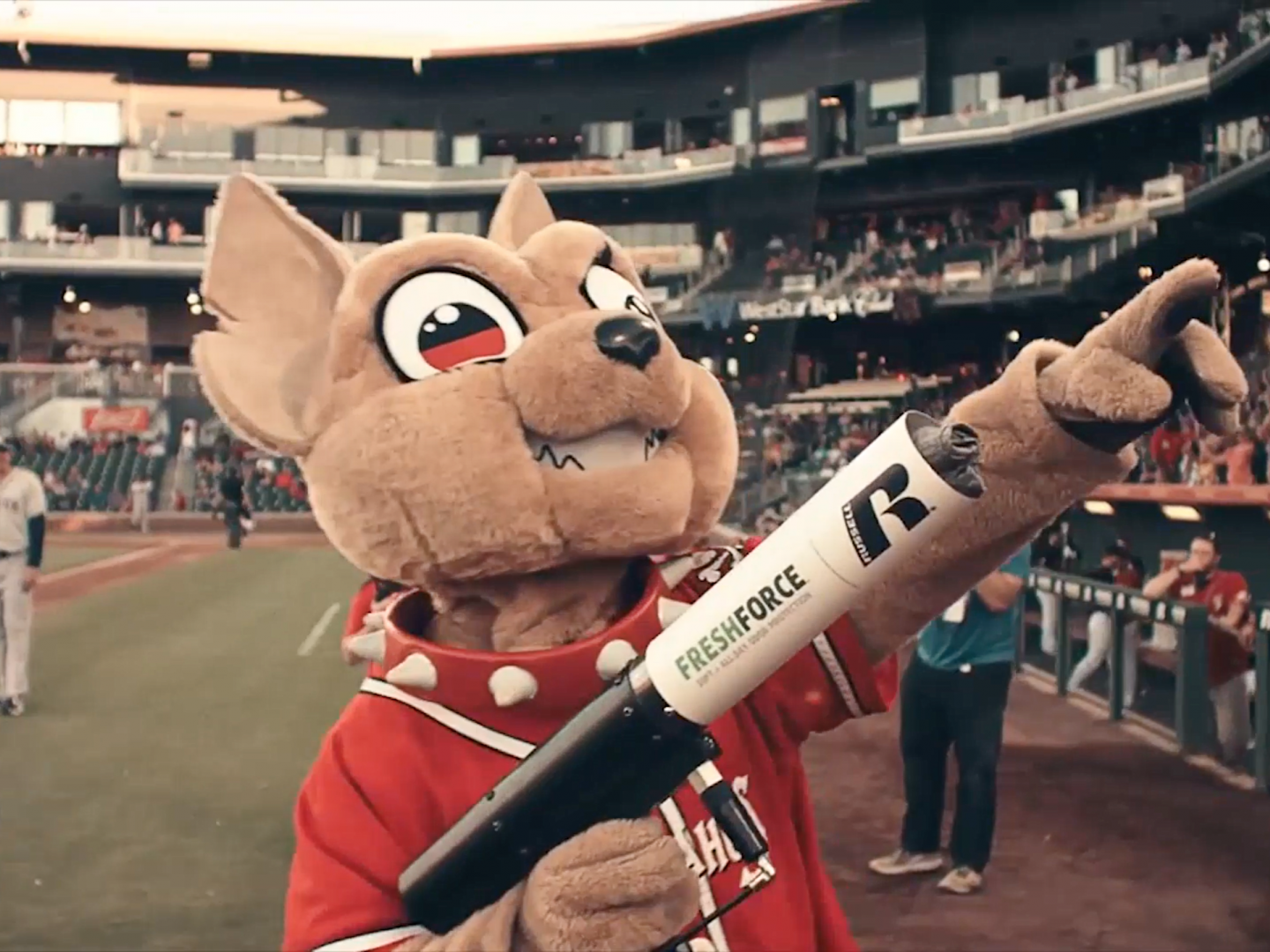 Image for MINOR LEAGUE MASCOTS, MAJOR LEAGUE FUNK | CHICO