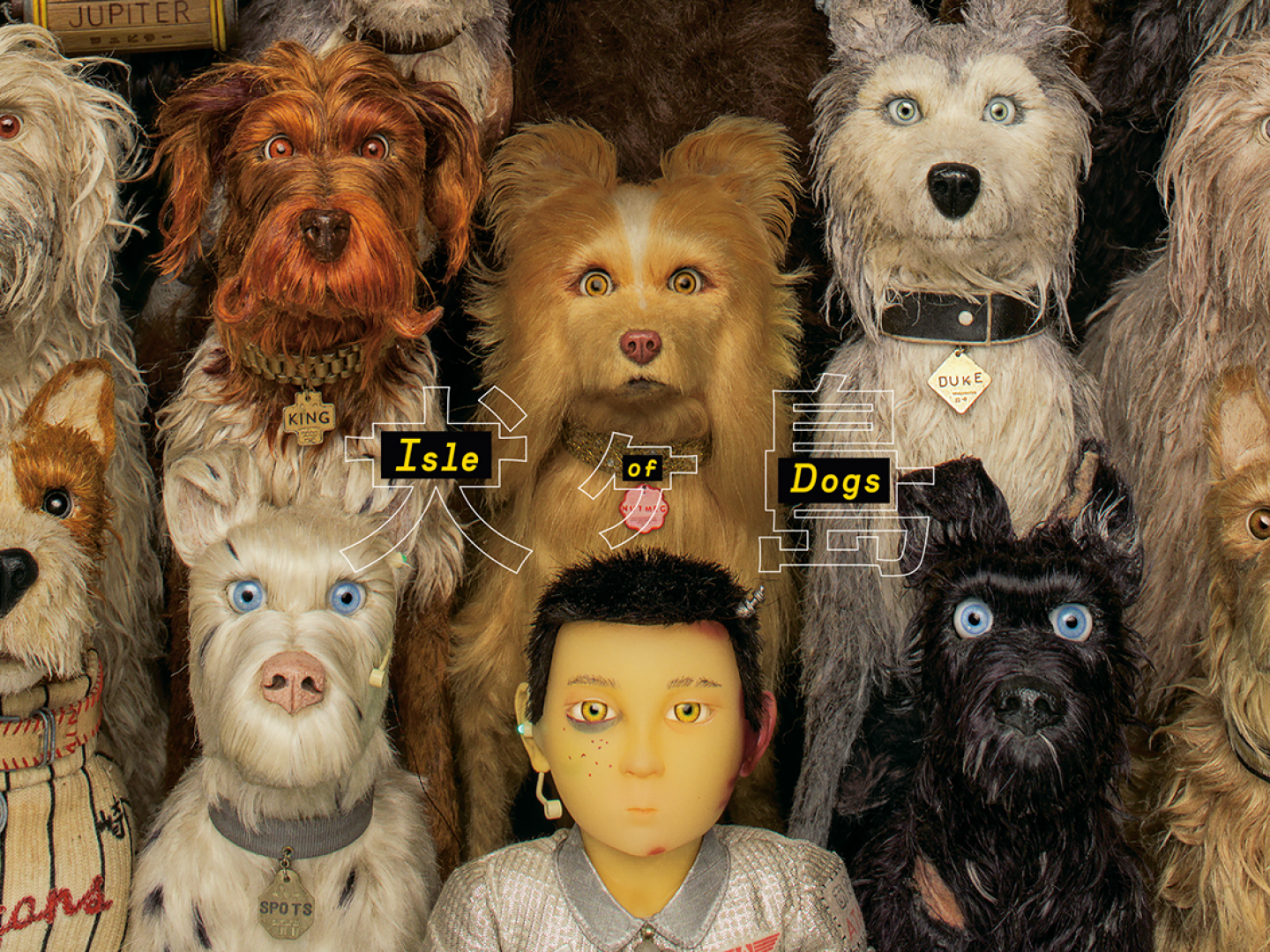 ISLE OF DOGS - SOCIAL CAMPAIGN Thumbnail