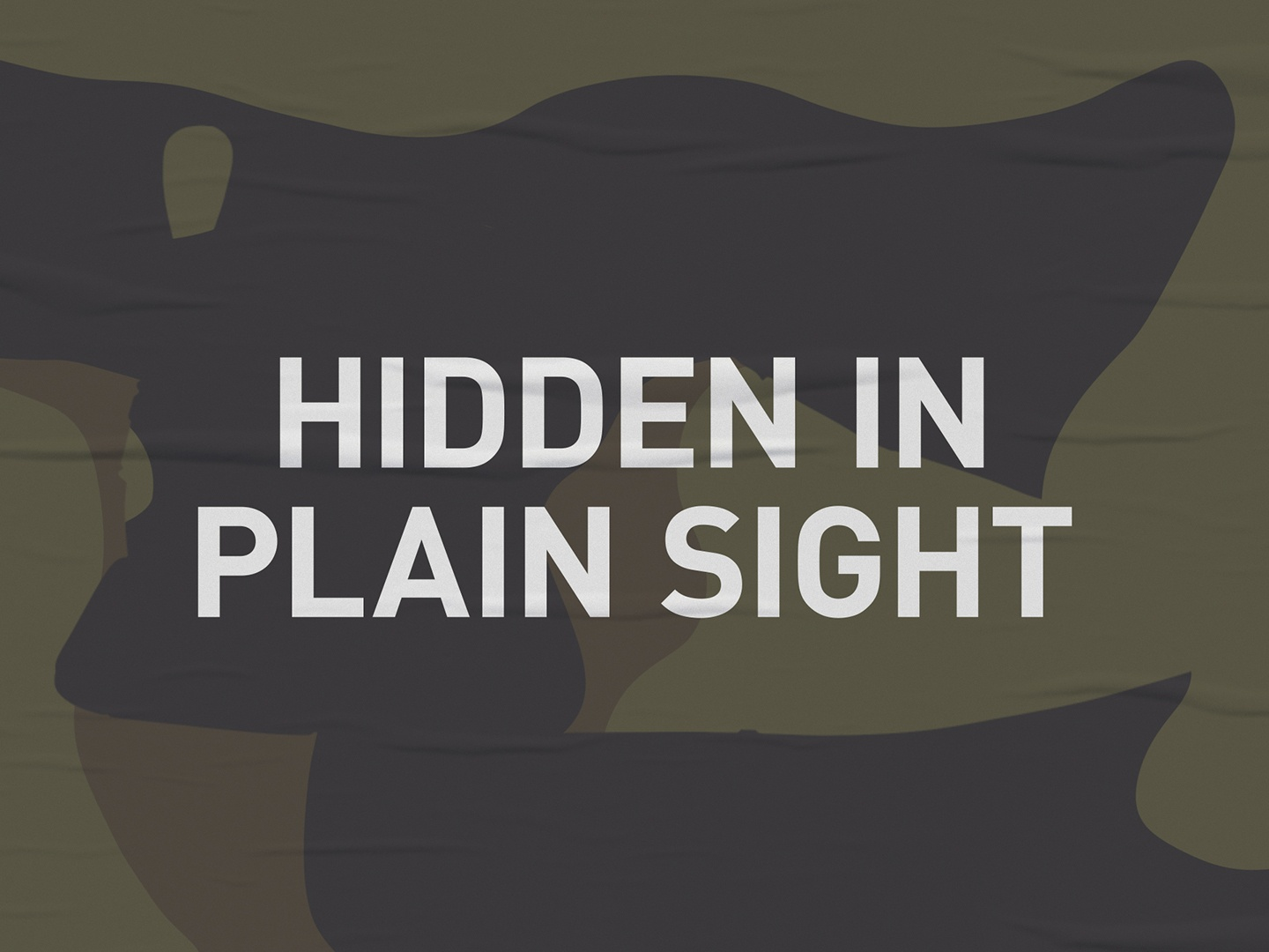 Hidden in Plain Sight Thumbnail
