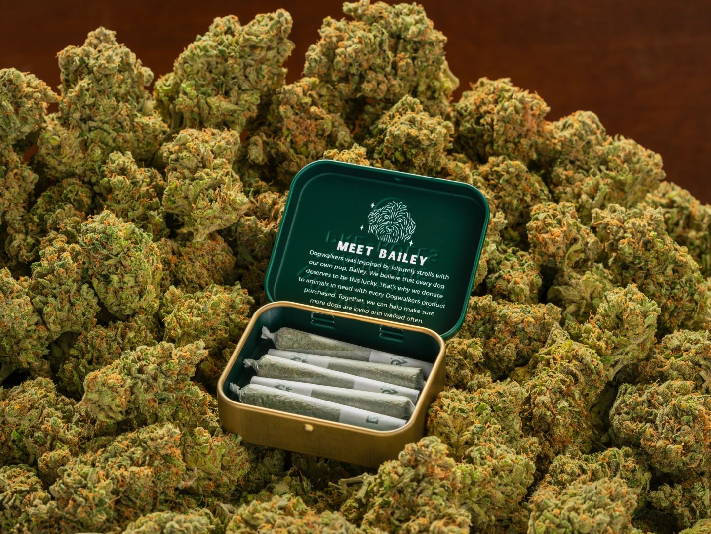 Dogwalkers : Your Loyal Cannabis Companion