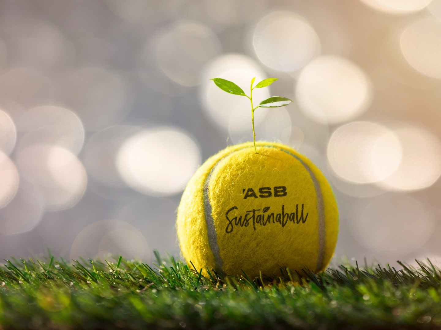 Sustainaball - A biodegradable tennis ball that plants a tree. Thumbnail