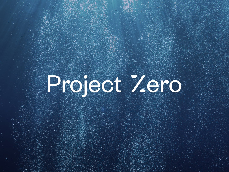 Project Zero Thumbnail