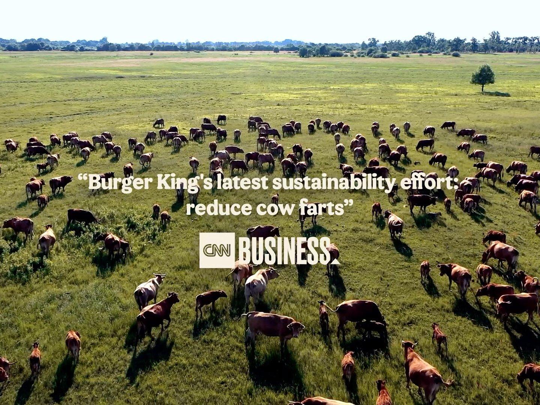 BK Cows' Menu  Thumbnail