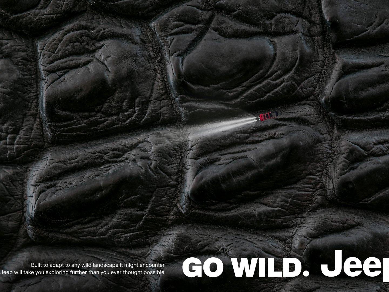 Go Wild 3: Crocodile Thumbnail