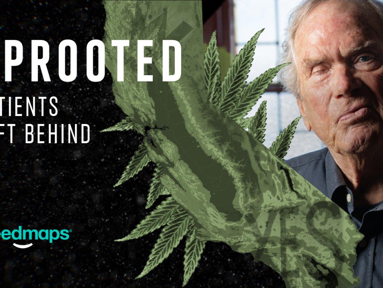 "Weedmaps: Uprooted Docuseries, Ep. 2: ""Patients Left Behind"""