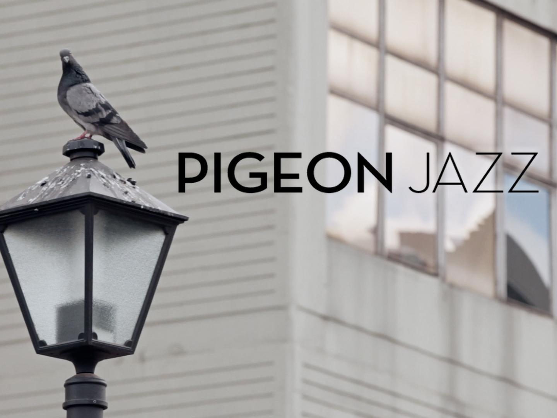 Pigeon Jazz Thumbnail