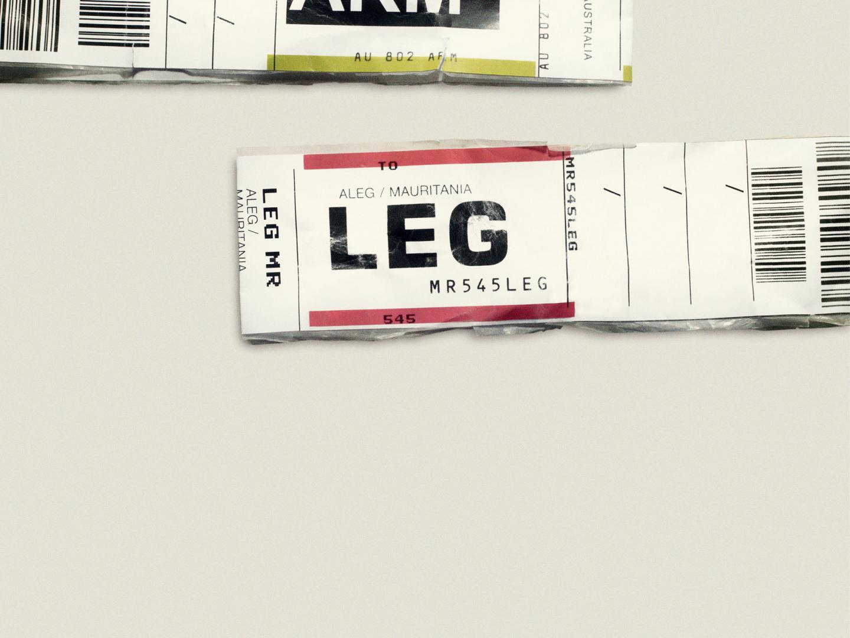 Arm Leg Thumbnail