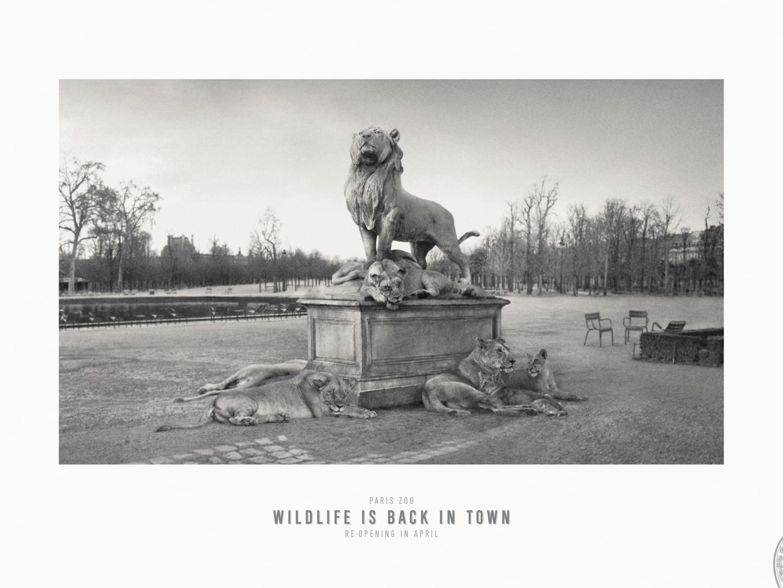 Jardin des Tuileries Thumbnail