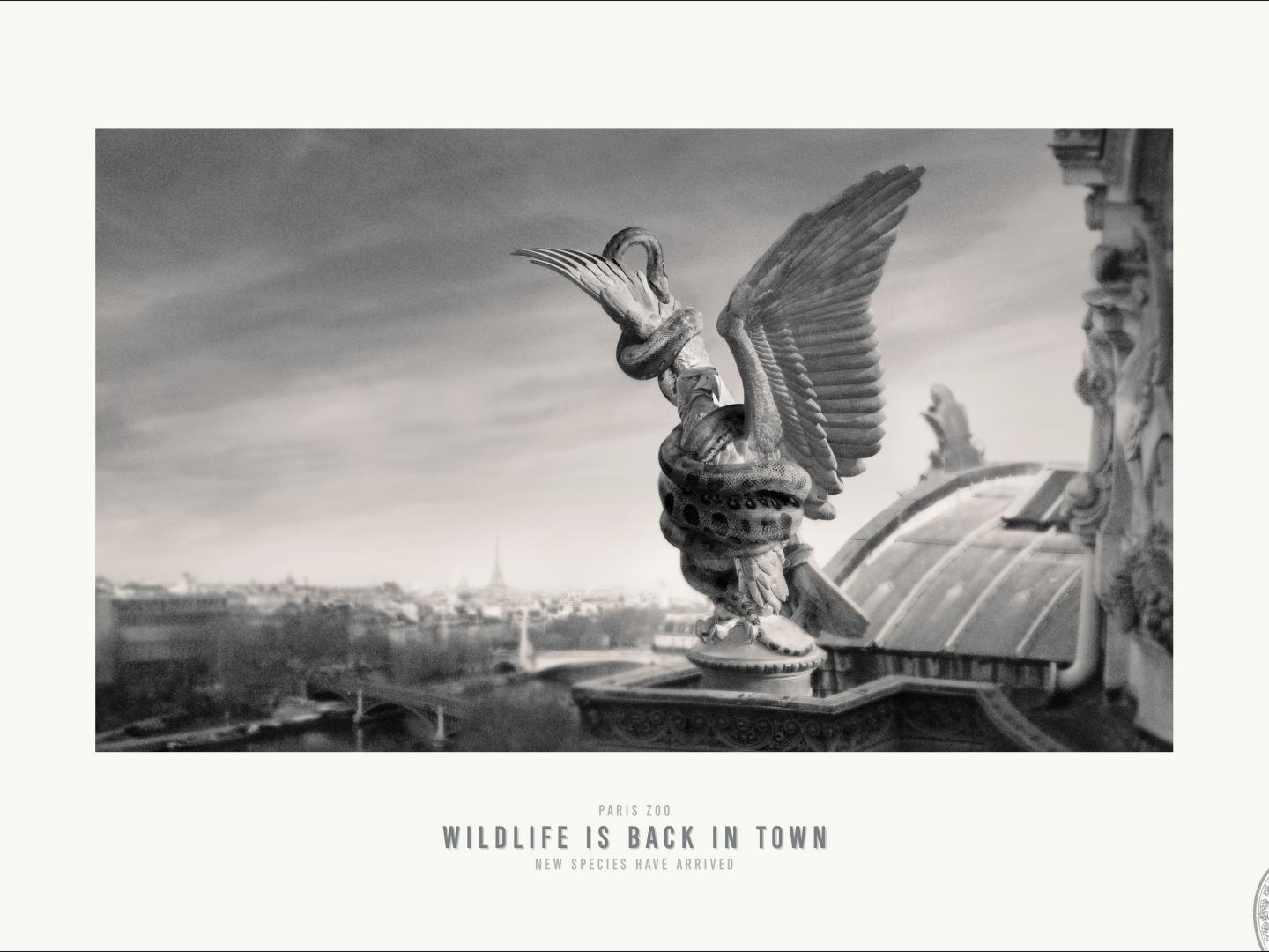 Image for Paris Zoo - Observatory