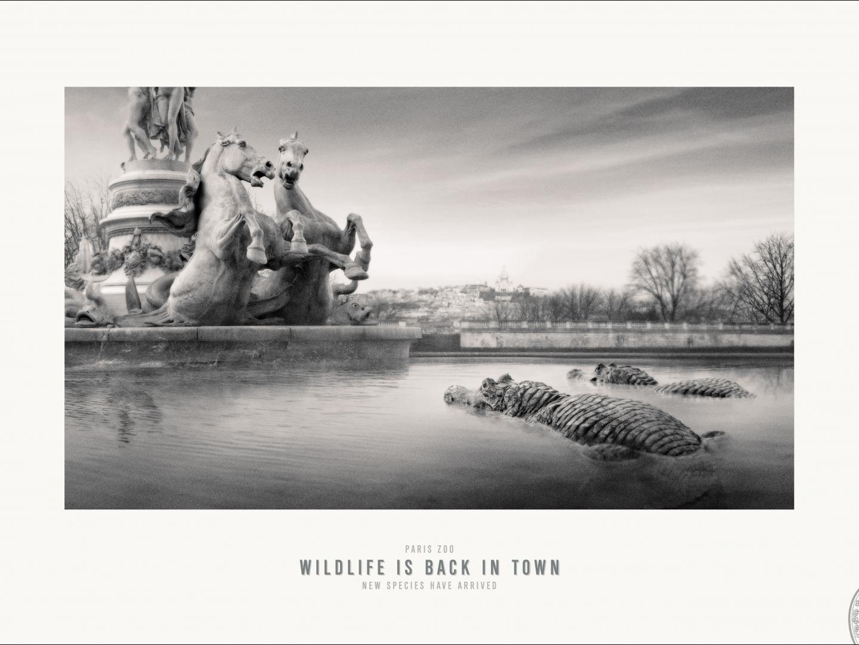 Paris Zoo - Opera Thumbnail