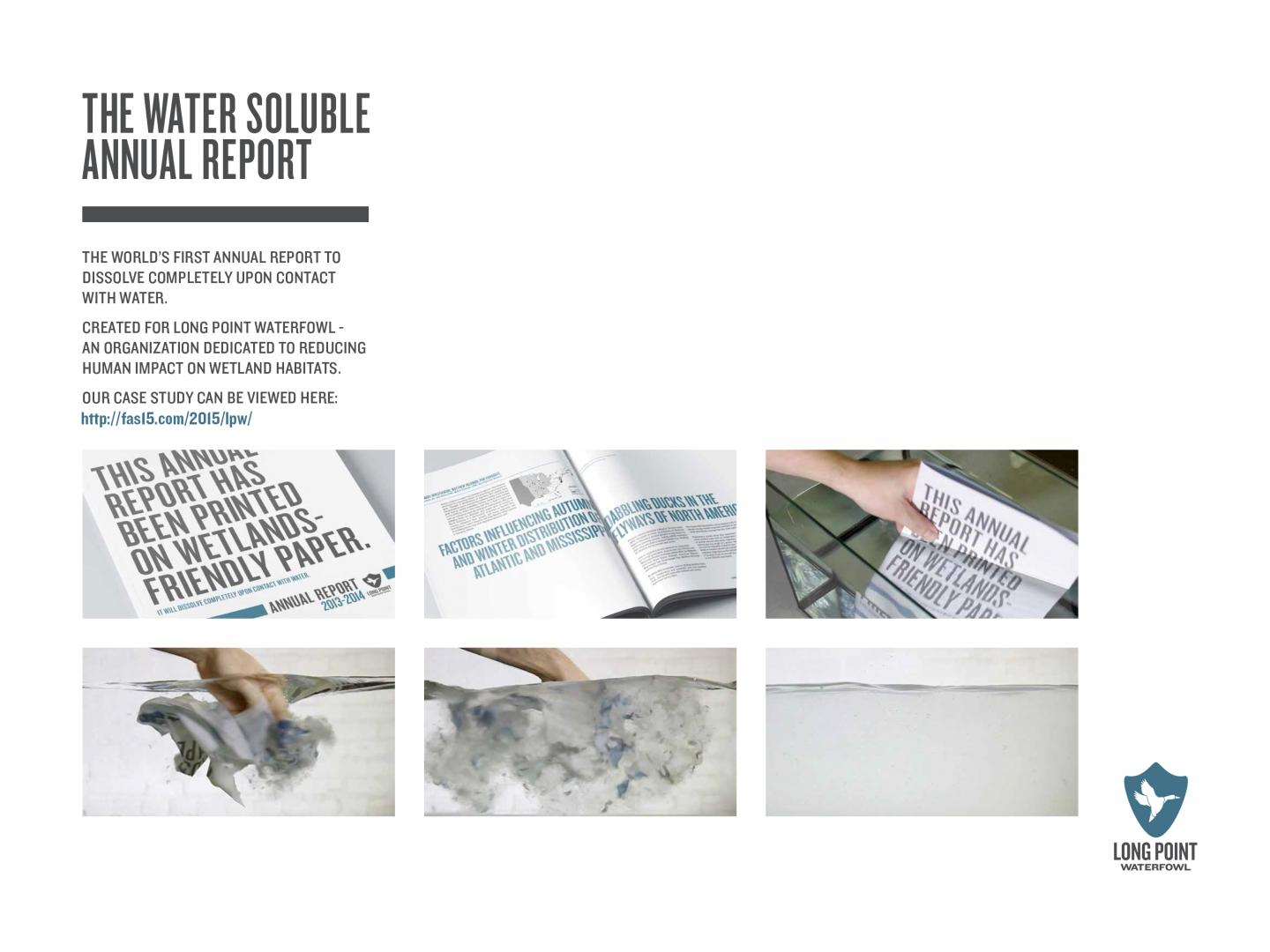 Water Soluble Annual Report Thumbnail
