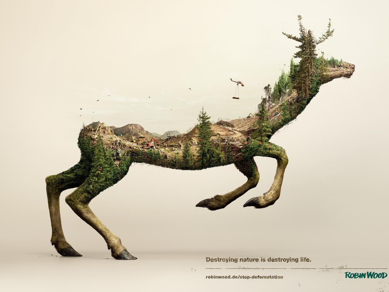 Image for Deer
