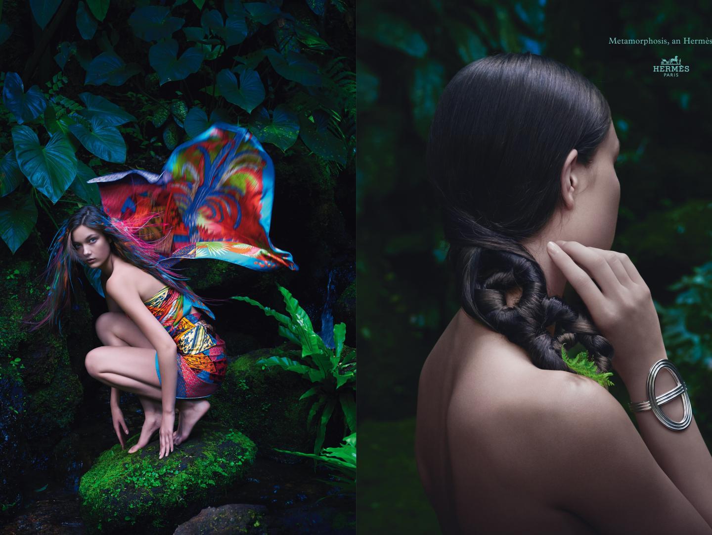 Image for Metamorphosis, an Hermès story